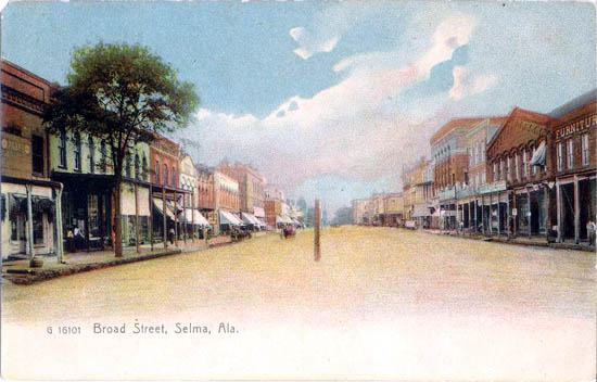 Penny Postcards From Dallas County Alabama