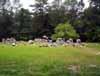 Carter Church Cemetery
