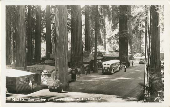 penny postcards from mendocino county  california pretty home interiors pretty honest