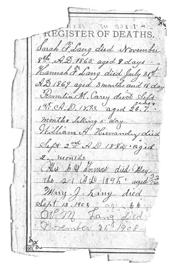 Pasco County Florida Marriage Records