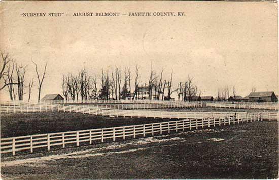 Nursery Stud August Belmont Fayette County Lexington