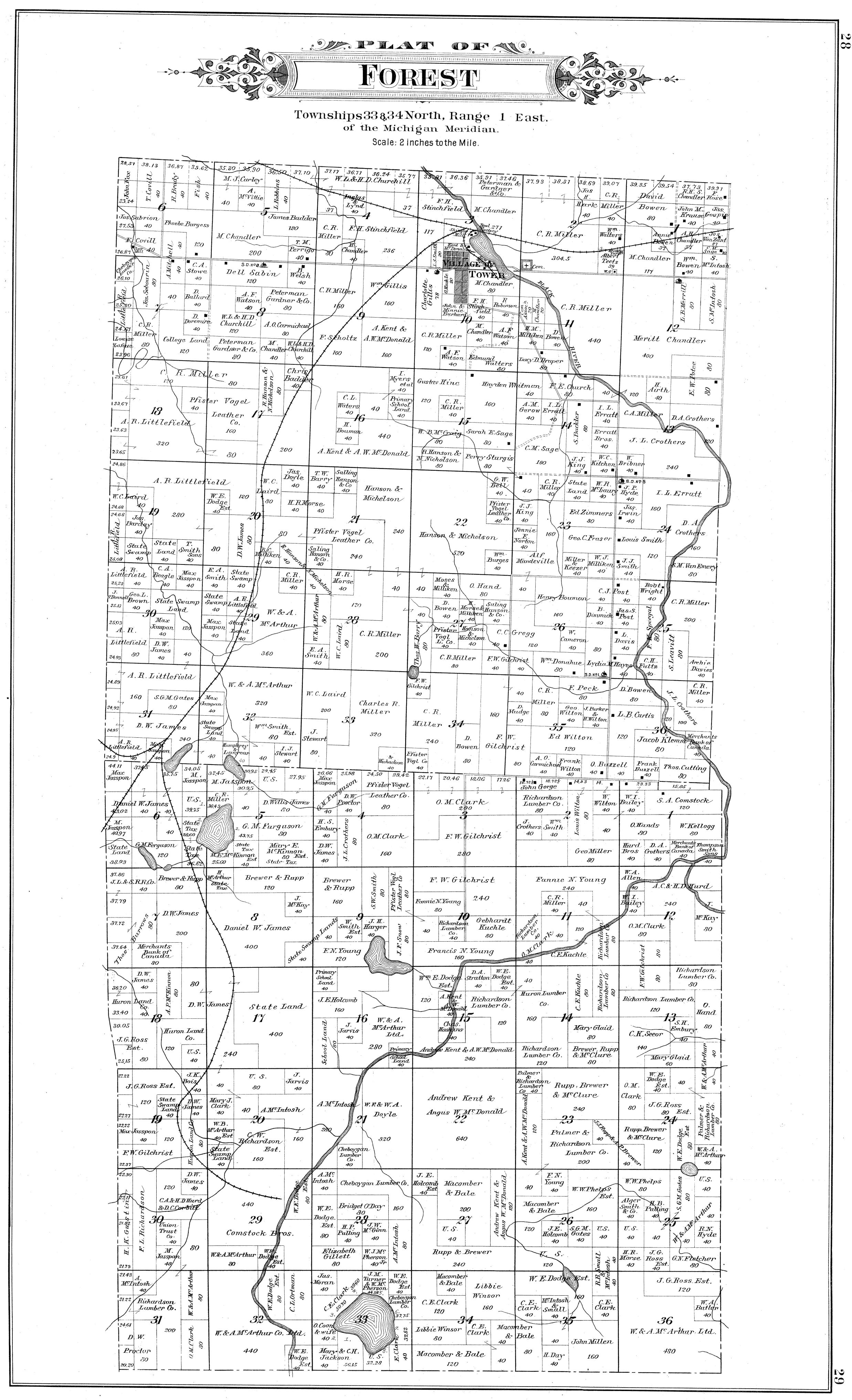 Forest on Lake George Michigan Map