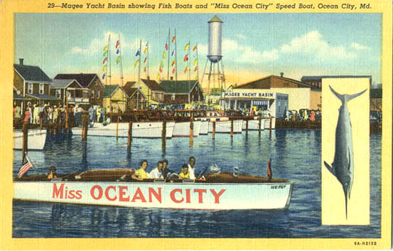 Penny Postcards From Worcester County Maryland