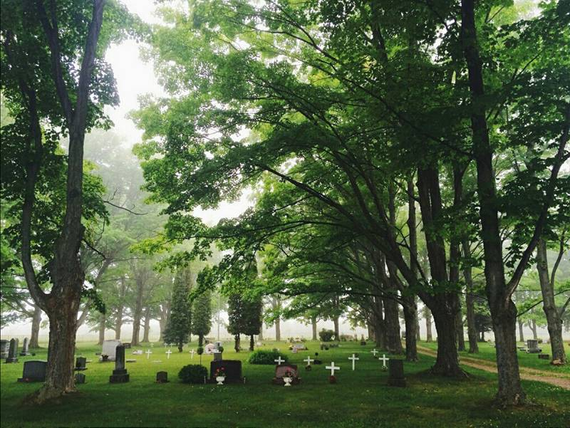 Norwood Lakeside Cemetery overview