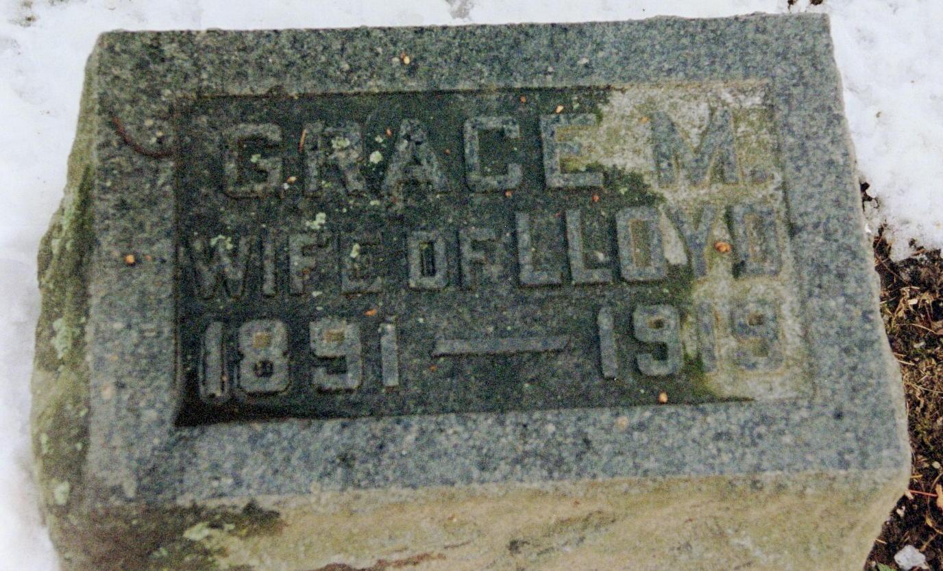 Michigan sanilac county croswell - Levitt Grace M
