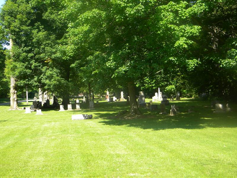Fawn River Township Cemetery overview