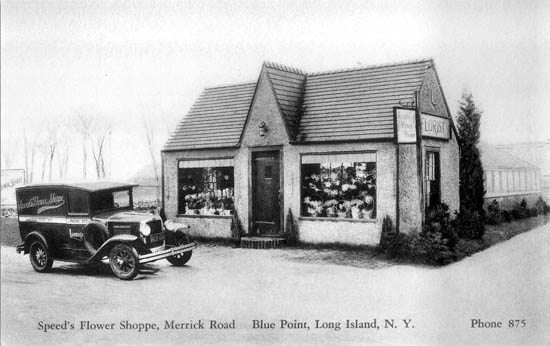 penny postcards from suffolk county  new york