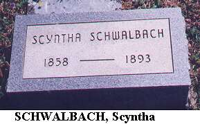 Scyntha Schwalbach