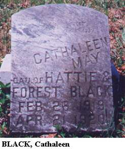 Cathaleen Black