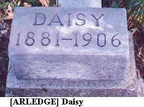 Daisy (Arledge)