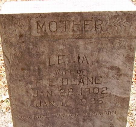 http://www.usgwarchives.net/ok/marshall/tombstone/smithcem/beanel.jpg
