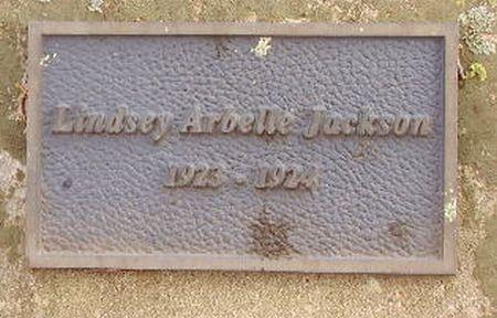 http://www.usgwarchives.net/ok/marshall/tombstone/smithcem/jacksonla.jpg