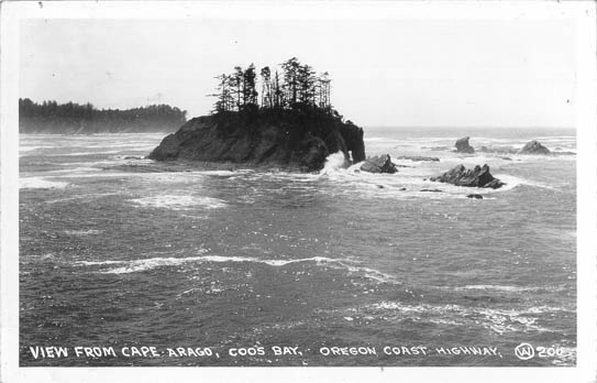 View from Cape Arago, Coos Bay, Oregon Coast Highway