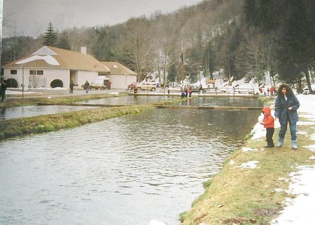 Highland county va photo album for Virginia fish hatchery