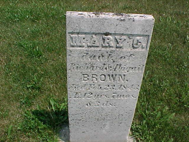 Mary C Vernon